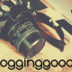 camera on a wooden background with the linky title below week 8