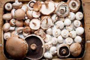 a crate of different type and sized mushrooms