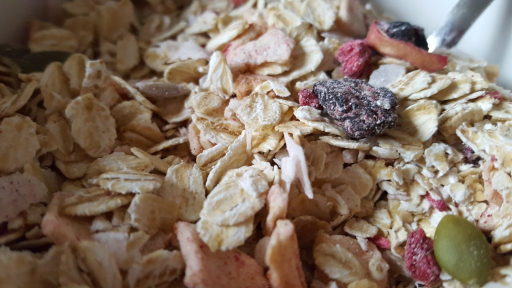 close up show of the MOMA oats and fruit before adding any liquid