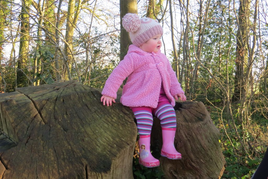 alyssa sat on top of a tree stump in pink wellies a pink woolen coat a pink knitted hat with two pompoms on and pink and blue striped tights