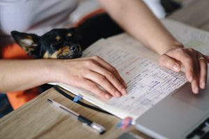 hands resting on an open exercise book with pens and rubbers next to it on a wooden desk and a small black dog peering onto the book from the lap of the person out of shot