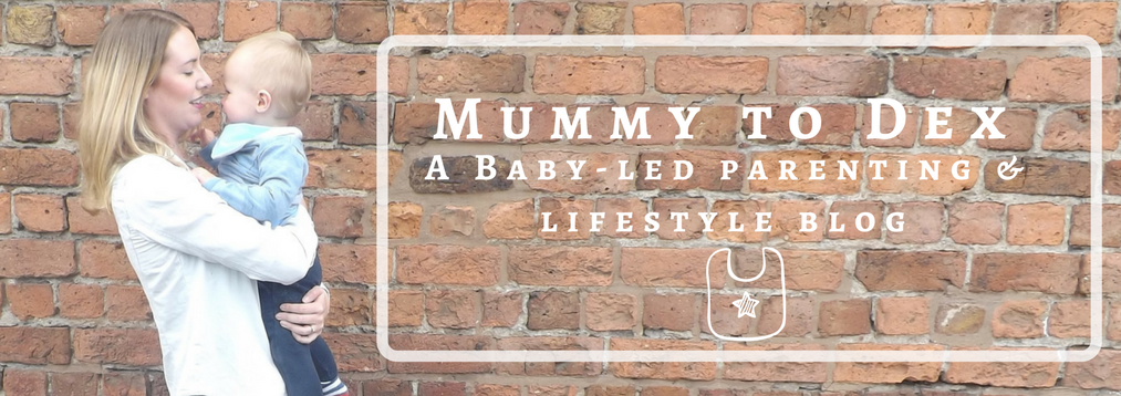 Mummy and Dex Blog logo which includes a picture of nicola and dex on the right